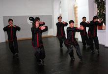 Shaolin Kung Fu Wien 2. Jubilaeum 20120415 Videos