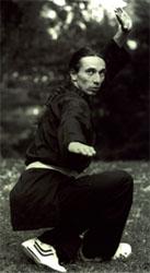 Shaolin Kung Fu Wien Meister Wolf